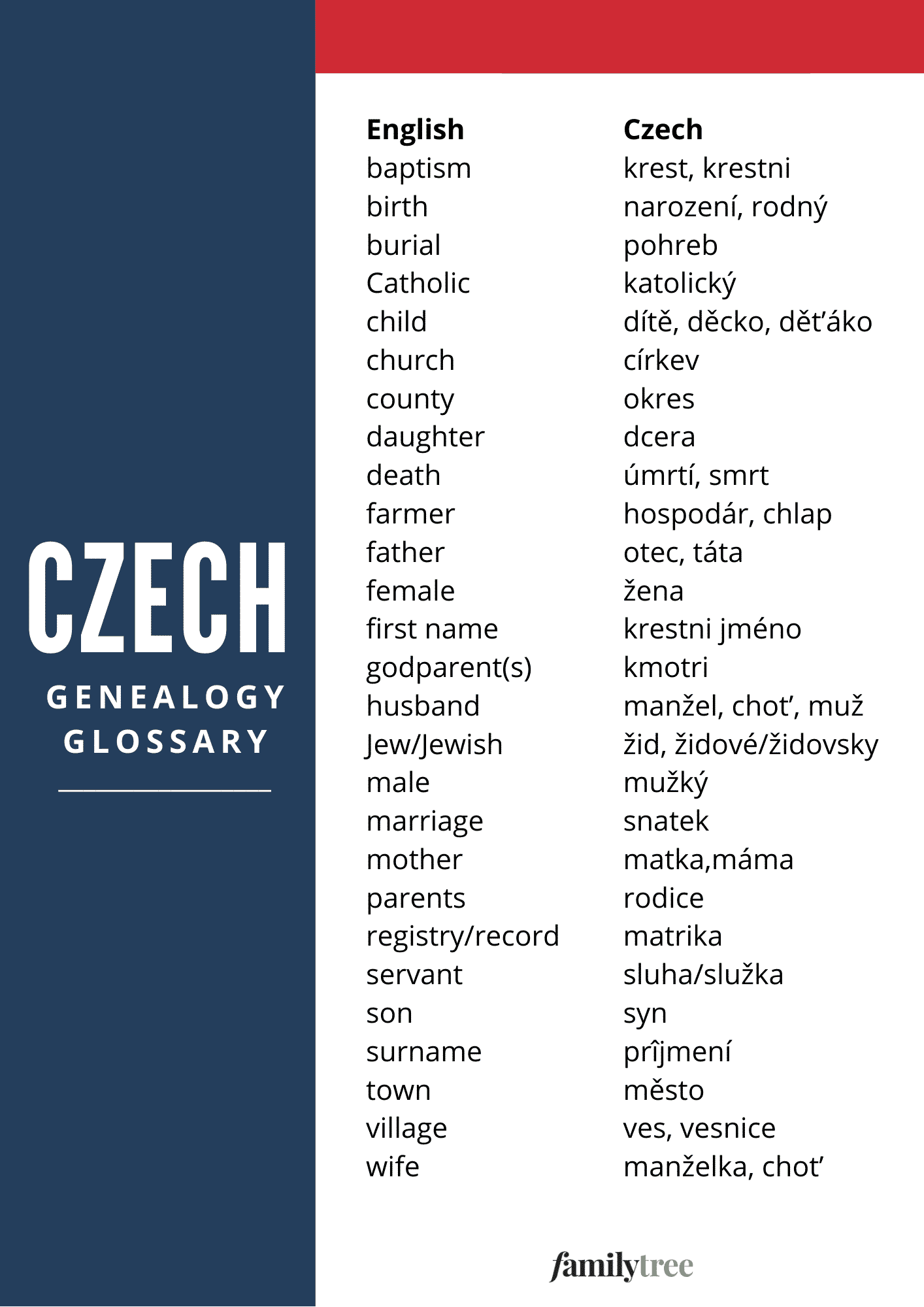 czech genealogy glossary