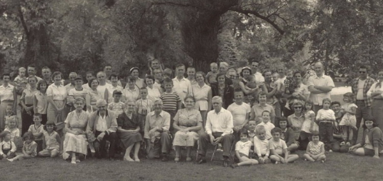 10 Steps To Family Reunion Success Family Tree