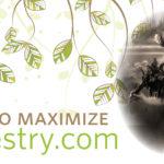 How to Maximize Ancestry.com