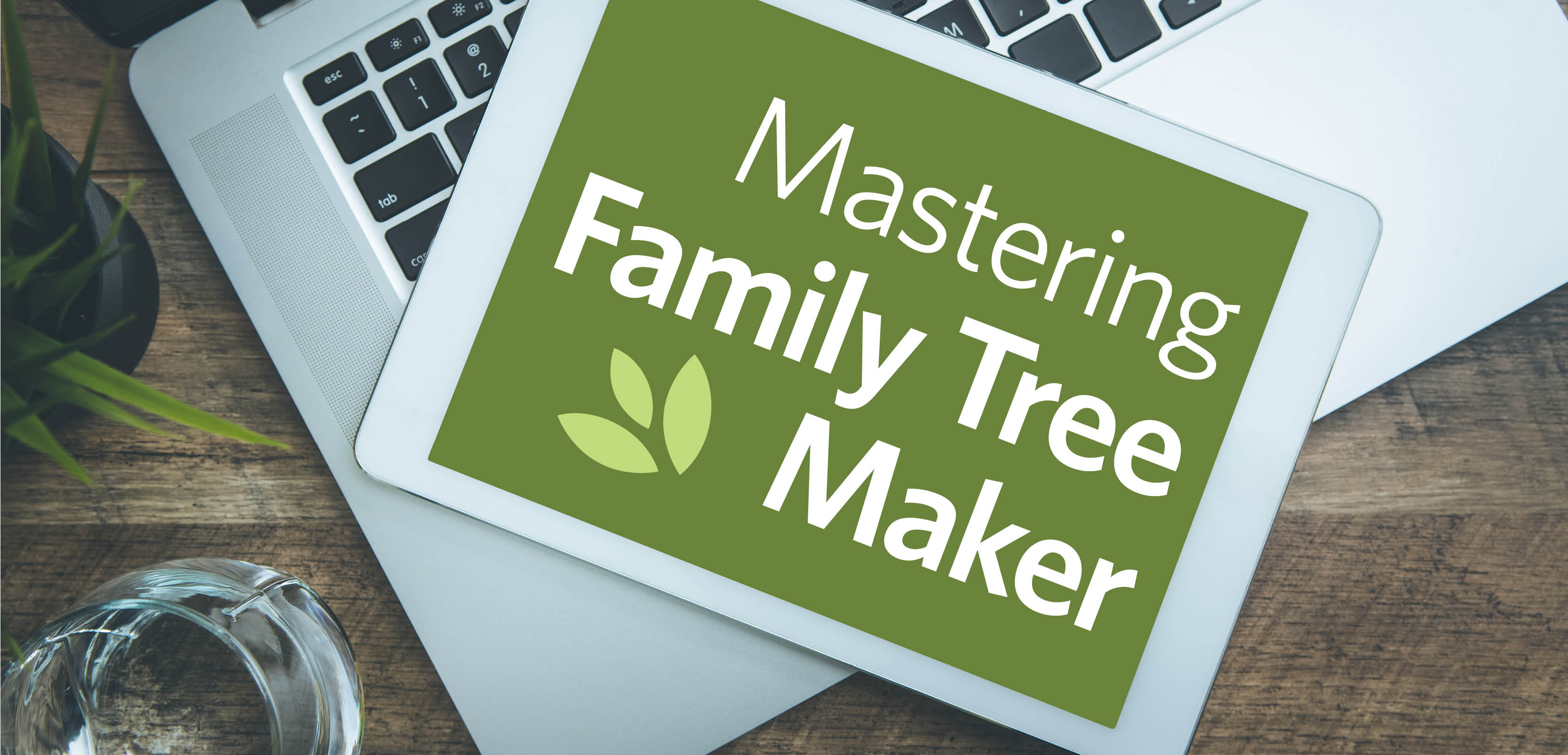 Family tree magazine the leading family history how to What tree represents family