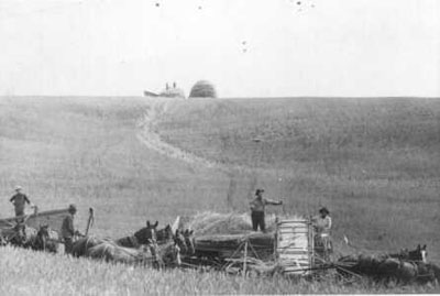 Pike farming SDedit.jpg