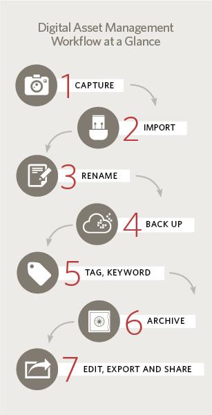 A seven-step digital asset workflow infographic.