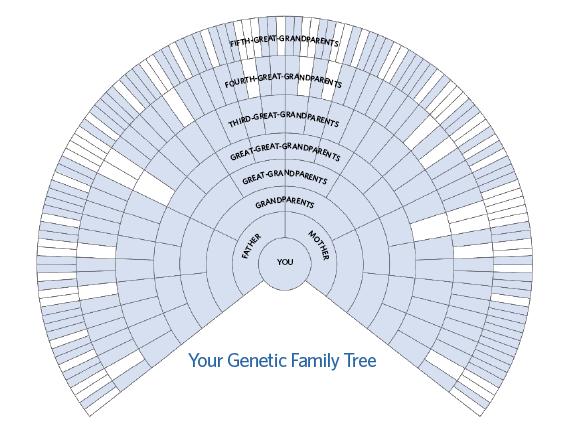pictures of family trees