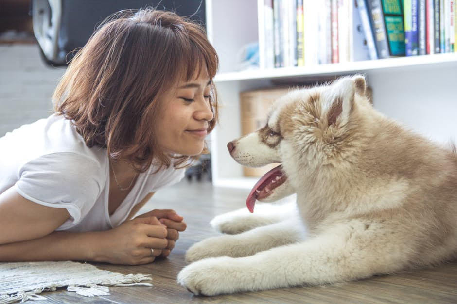 Why do we keep dogs as pets? Find out on FamilyTreeMagazine.com