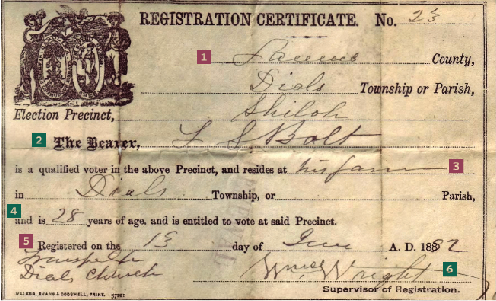 Document Detective Voter Registration Family Tree