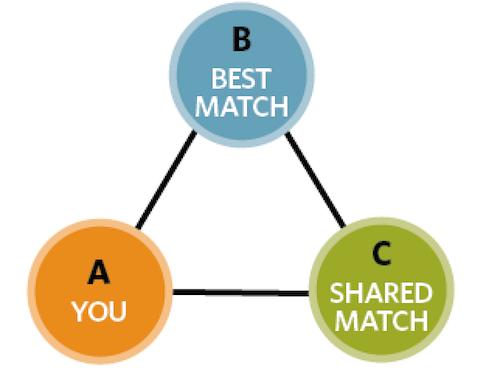 Triangulating DNA matches.