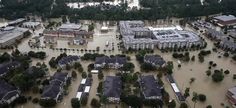 Houston Family Tree DNA Hurricane Harvey