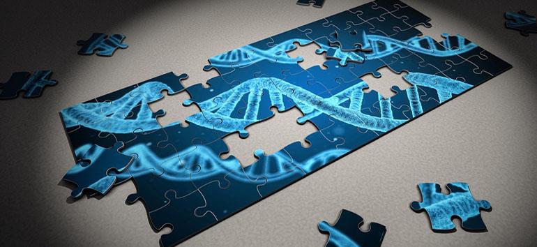 DNA puzzle pieces.