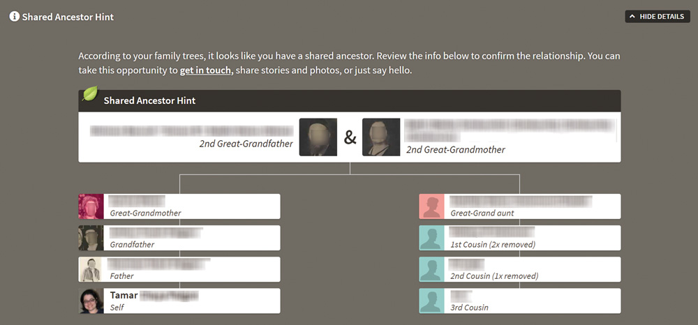 The last step in how to create mirror trees is looking for shared ancestor hints.
