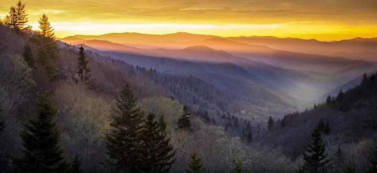 1800's North Carolina