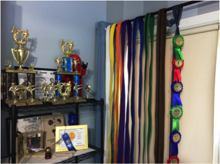 Family history displays for kids trophies and ribbons.