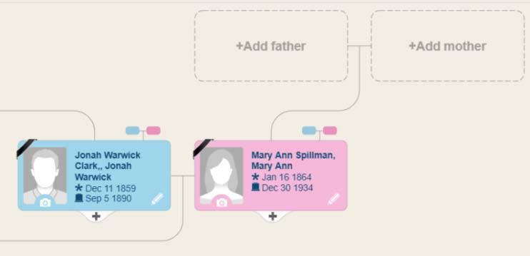 Edit your MyHeritage family tree by zooming in to individual profiles.