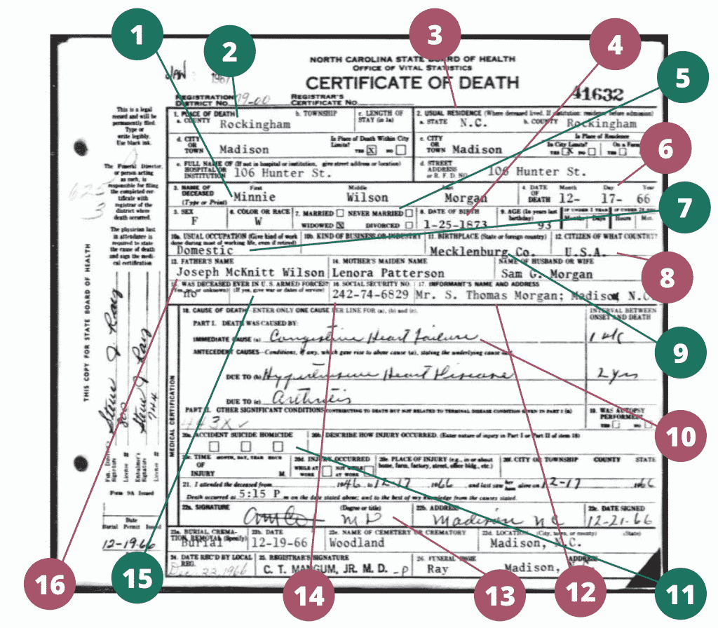 A diagram of a death certificate with numbers highlighting genealogically relevant information.