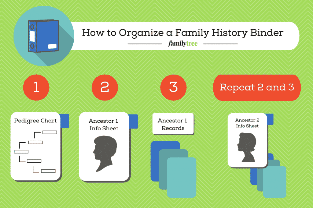 Illustration describing how to organize a family history binder.