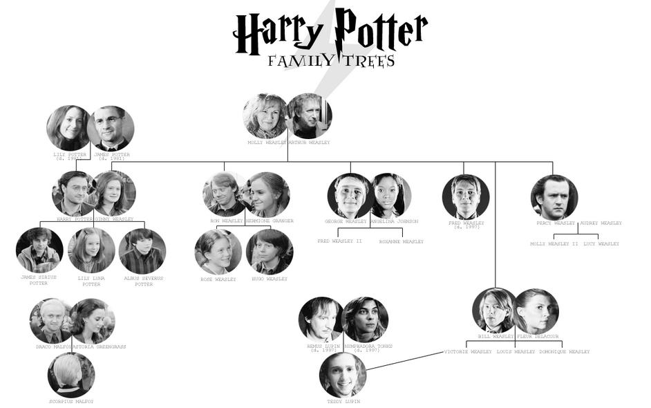 Схема родословной гарри поттера